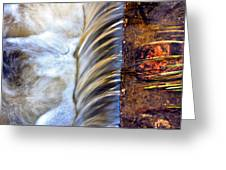 Zen Weir Greeting Card by EXparte SE