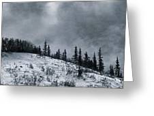 Melancholia Pines And Trees Greeting Card by Priska Wettstein