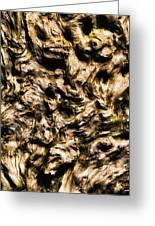Melting Wood Greeting Card by Wim Lanclus