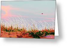 Memorial Day By The Sea Greeting Card by Susan Carella