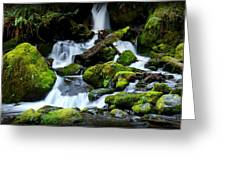 Merriman Falls Greeting Card by Christopher Fridley