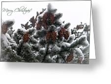 Merry Christmas Pinecones Greeting Card by Michelle Frizzell-Thompson