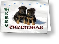 Merry Christmas Puppies Greeting Card by Aimee L Maher Photography and Art