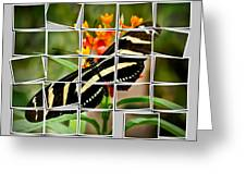 Messed Up Butterfly Greeting Card by Jean Noren