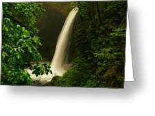 Metlako Falls Greeting Card by Jeff  Swan