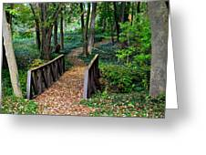 Metroparks Pathway Greeting Card by Frozen in Time Fine Art Photography