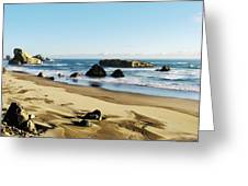 Meyers Creek Beach Oregon Greeting Card by Rafael Escalios