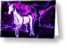 Midnight Fantasy Greeting Card by Tisha McGee