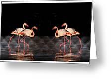 Midnight Tango Greeting Card by Ernestine Manowarda
