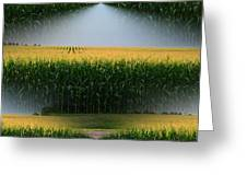 Midwest Gold Greeting Card by Luther   Fine Art