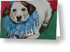 Mikey Greeting Card by Jeanne Fischer