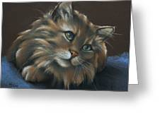 Miko Greeting Card by Cynthia House