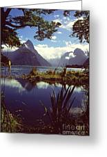 Milford Sound In New Zealand's Fiordland National Park Greeting Card by Alex Cassels