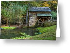 Mill Pond In Woods Greeting Card by William Jobes