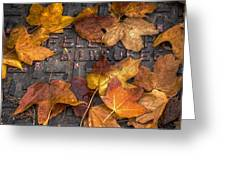 Milwaukee Autumn Greeting Card by Scott Norris