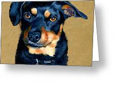 Miniature Pinscher Dog Painting Greeting Card by Alice Leggett