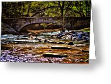 Minnehaha Creek 5 Greeting Card by Todd and candice Dailey
