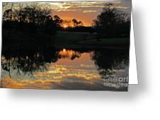 Mirror Image  Greeting Card by Jinx Farmer