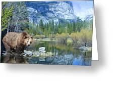 Mirror Lake Bear Greeting Card by Alixandra Mullins