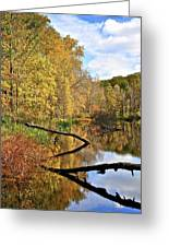 Mirror Mirror On The Floor Greeting Card by Frozen in Time Fine Art Photography