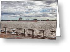 Mississippi River In New Orleans Greeting Card by Kay Pickens