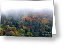 Mist And Fall Color Greeting Card by Thomas R Fletcher