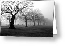 Mist In The Park Greeting Card by Mark Rogan