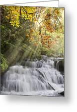 Misty Falls At Coker Creek Greeting Card by Debra and Dave Vanderlaan