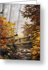 Misty Footbridge Greeting Card by Scott Norris