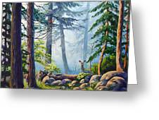 Misty Morning Greeting Card by CB Hume