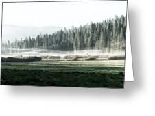 Misty Morning In Yosemite Greeting Card by Jane Rix