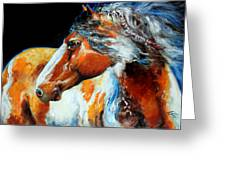 Mohican The Indian War Pony Greeting Card by Marcia Baldwin