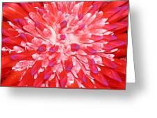 Molokai Bromeliad Greeting Card by James Temple
