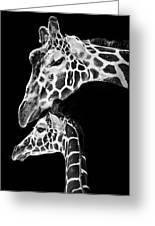 Mom And Baby Giraffe  Greeting Card by Adam Romanowicz