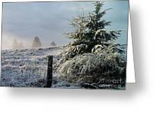 Moment Of Peace Greeting Card by Rory Sagner