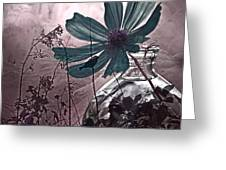 Moments Recaptured Greeting Card by Bonnie Bruno