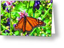 Monarch Beauty Greeting Card by Nicole Engelhardt