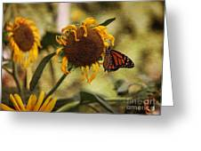 Monarch On The Sunflower Greeting Card by Yumi Johnson