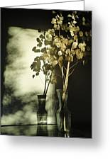 Money Plants Really Do Cast Shadows Greeting Card by Guy Ricketts