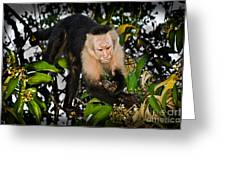 Monkey Business Greeting Card by Gary Keesler