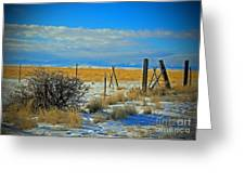 Montana Fencerow Greeting Card by Desiree Paquette