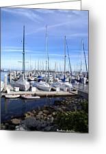 Monterey Harbor California Greeting Card by Barbara Snyder