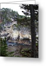 Monterey Rock Pines And Cypress Greeting Card by Viktor Savchenko