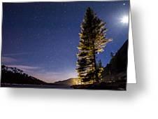 Moon Light Over Tenaya Lake Greeting Card by Cat Connor