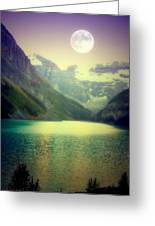 Moonlit Encounter Greeting Card by Karen Wiles