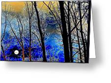 Moonlit Frosty Limbs Greeting Card by Will Borden