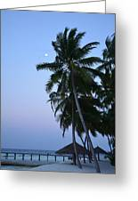 Moonrise In Maldives Greeting Card by Corinne Rhode