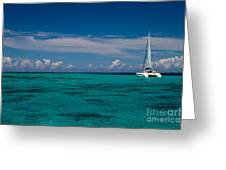 Moorea Lagoon No 16 Greeting Card by David Smith