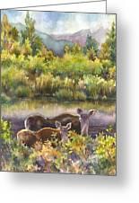 Moose Magic Greeting Card by Anne Gifford