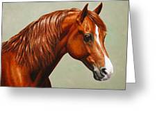 Morgan Horse - Flame Greeting Card by Crista Forest
